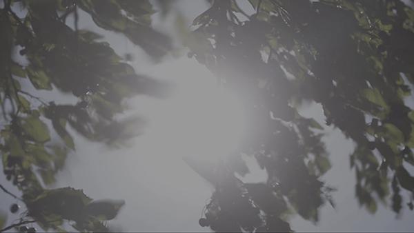 Michael Brooks Falklandien Film Produktion Landquart Graubünden Familiengeschichten Doku 16 min 1